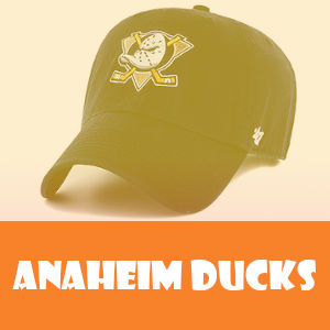 articulos de anaheim ducks
